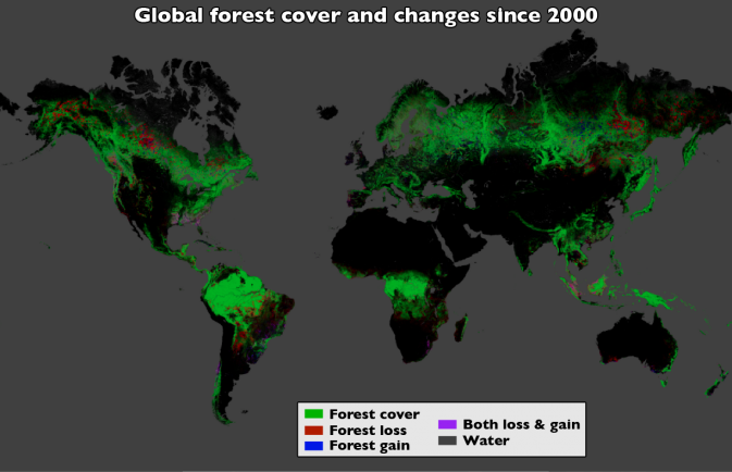 Forests: A Map of Global Changes