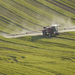 Global Threats: Contamination of Surface Waters by Agricultural Insecticides